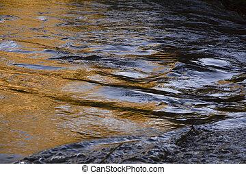 Autumn's golden river
