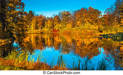 autunm landscape, perfect fall scenery
