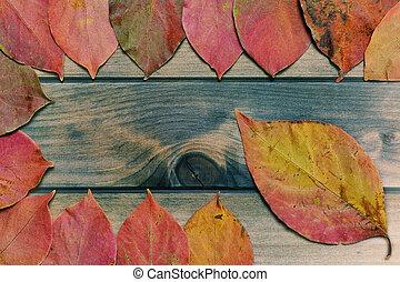 autunnale, cachi, foglie, su, un, anticaglia, tavola legno