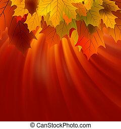 autunnale, eps, sunlight., mette foglie, 8, acero