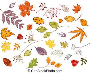 autunnale, foglie, e, piante