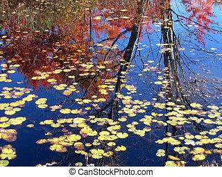 autunno, 2, riflessioni