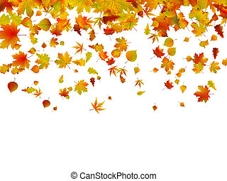 autunno, 8, leaves., fondo, eps