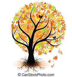 autunno, albero, colorito