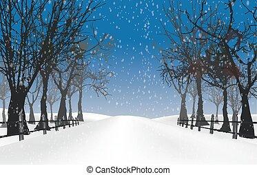 autunno, albero natale, inverno, bac