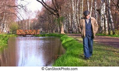 autunno, anziano, parco, camminare