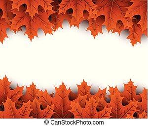 autunno, arancia, acero, leaves., fondo