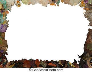 autunno, astratto, grunge, cornice