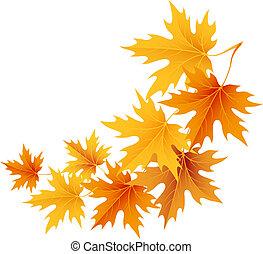 autunno, background.vector., foglie