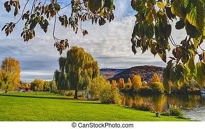 autunno, banca fiume, paesaggio