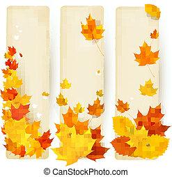 autunno, bandiere, con, colorito, permesso