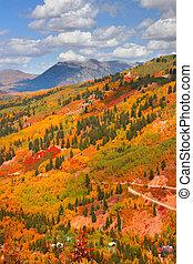 autunno, colorado, scena