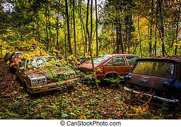 autunno, colori, junkyard., automobili