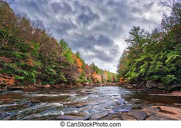 autunno, colori, splendente, su, uno, selvatico, fiume, in, il, montagne appalachian