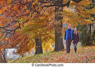 autunno, coppia, parco