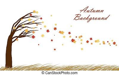 autunno, disegno