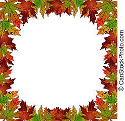 autunno, fogli caduta, bordo, quadrato