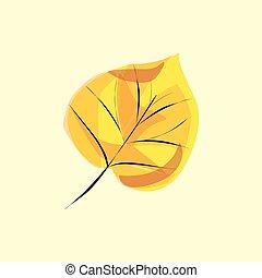 autunno, foglia albero, betulla