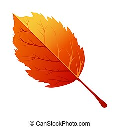 autunno, foglia albero