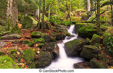 autunno, foresta, nero, cascate, germania, gertelsbacher