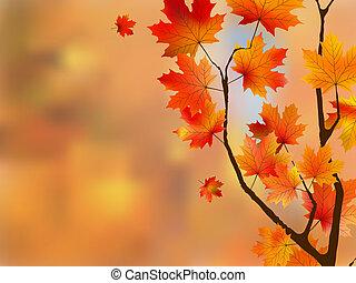 autunno, fuoco., poco profondo, foglie rosse