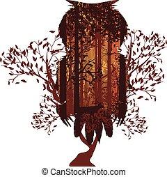 autunno, gufo, foresta, paesaggio