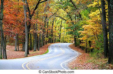 autunno, guidare
