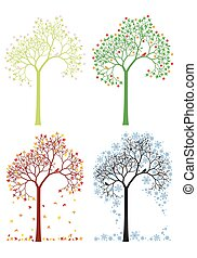 autunno, inverno, primavera, estate, albero