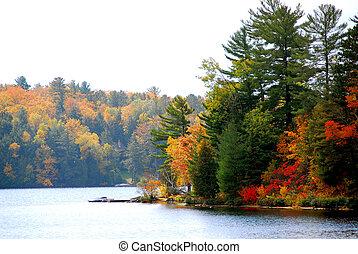 autunno, lago