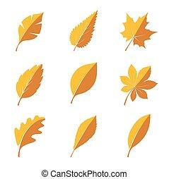 autunno, leafs., set, illustration., vettore