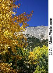 autunno, montagna