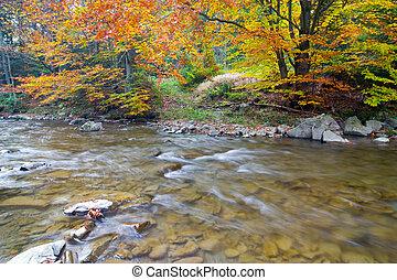 autunno, montagna, cascata, albero, pietre