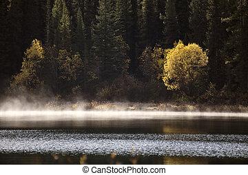 autunno, montagna, roccioso, lago