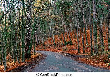 autunno, montagne, paesaggio, strada, foresta