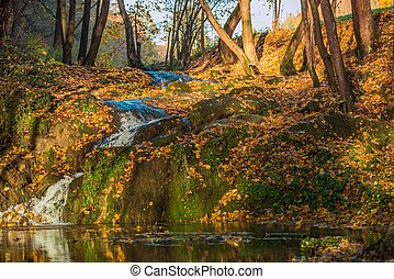 autunno, natura, scenario