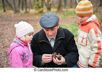 autunno, nipoti, legno, nonno