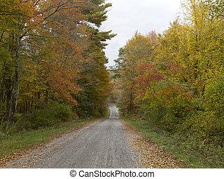 autunno, nuova inghilterra