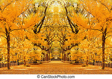 autunno, parco centrale
