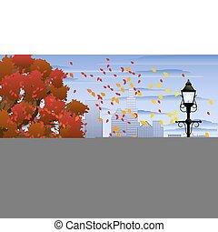 autunno, parco