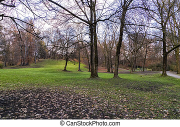 autunno, parco, vista