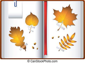 autunno parte, quaderno