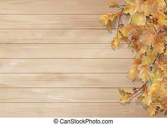 autunno parte, quercia, fondo