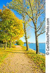 autunno, percorso, ghiaia, mare