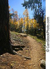 autunno, percorso