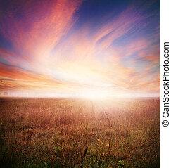 autunno, presto, morning., paesaggio, mattina