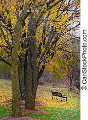 autunno, scena