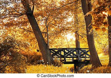 autunno, scenario