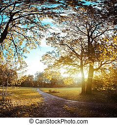 autunno, sera