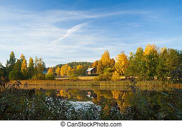 autunno, sereno, finlandia, scena