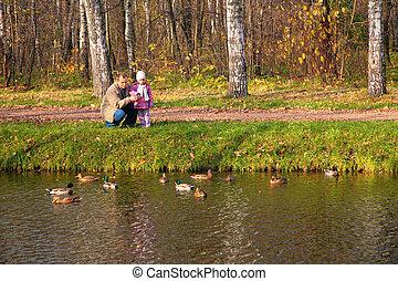 autunno, sguardo, nipote, nonno, acqua, anatre legno